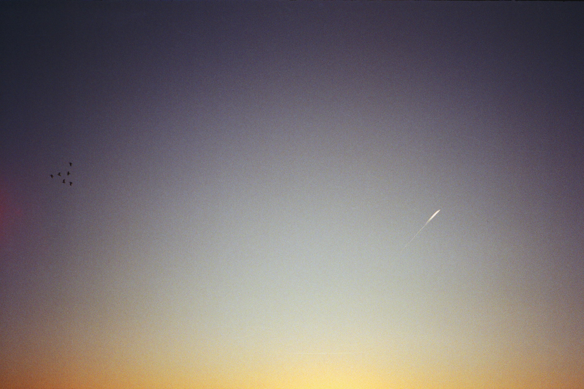 sky surfers film.jpg