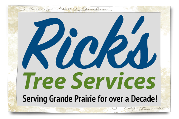 rick-web-home-banner-about1.jpg