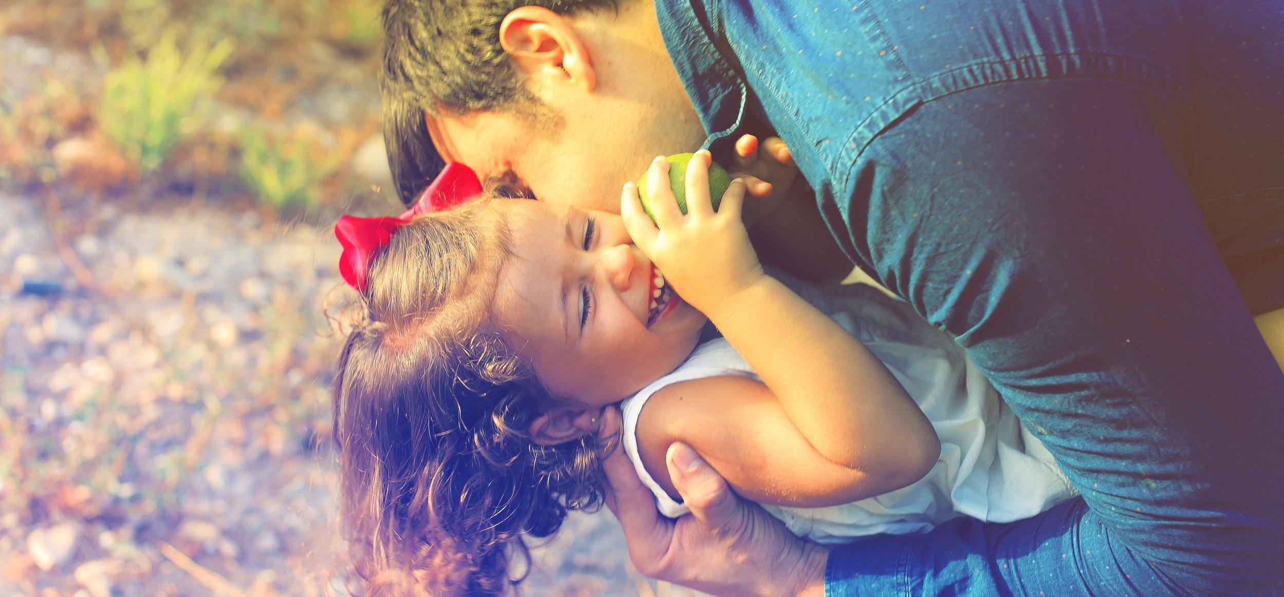 Family Law Divorce Lawyer Novi, MI