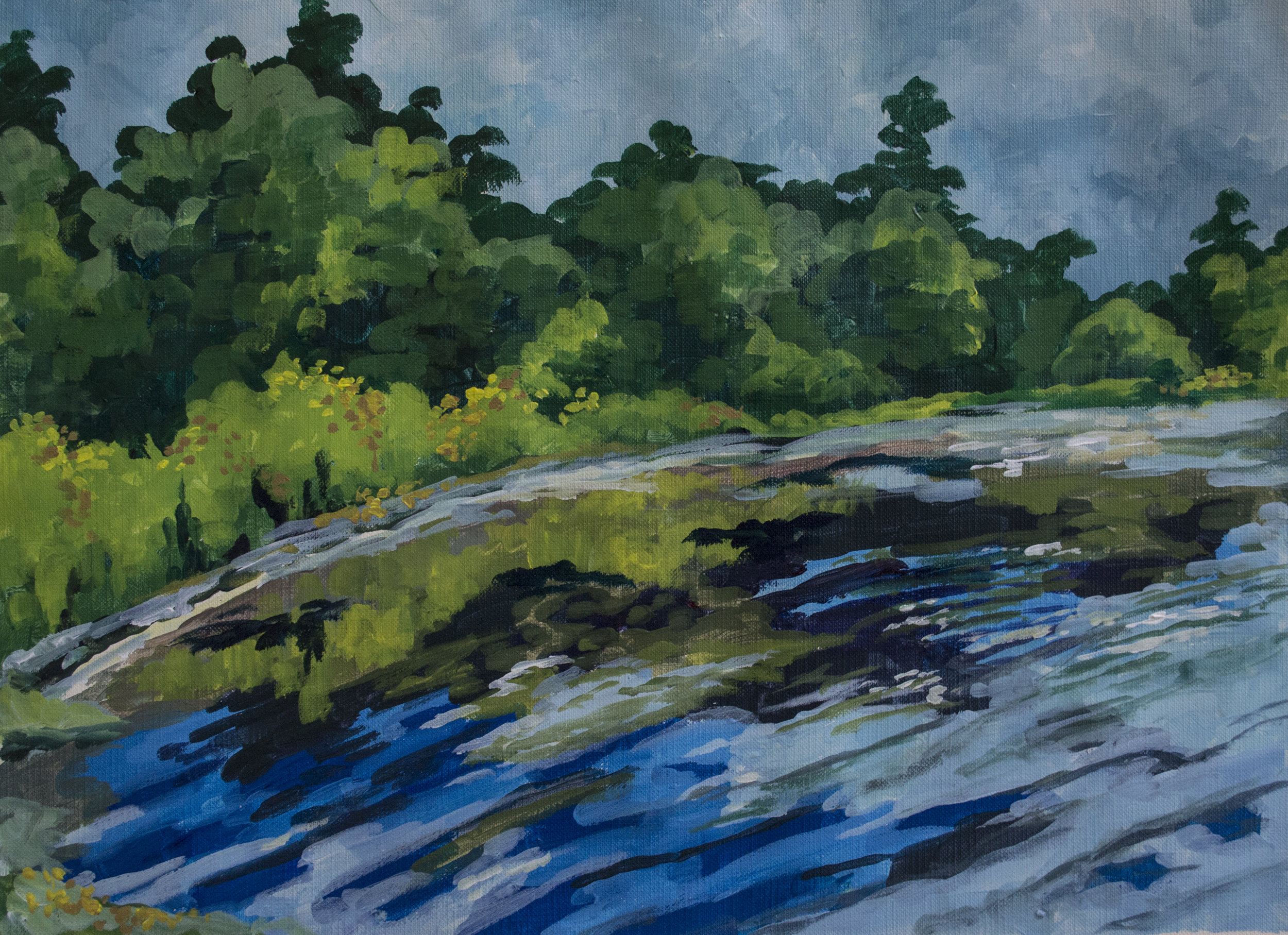 Ashuelot Cove   2018  15 in x 11 in  Acrylic on Paper