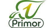 primor-main2.jpg