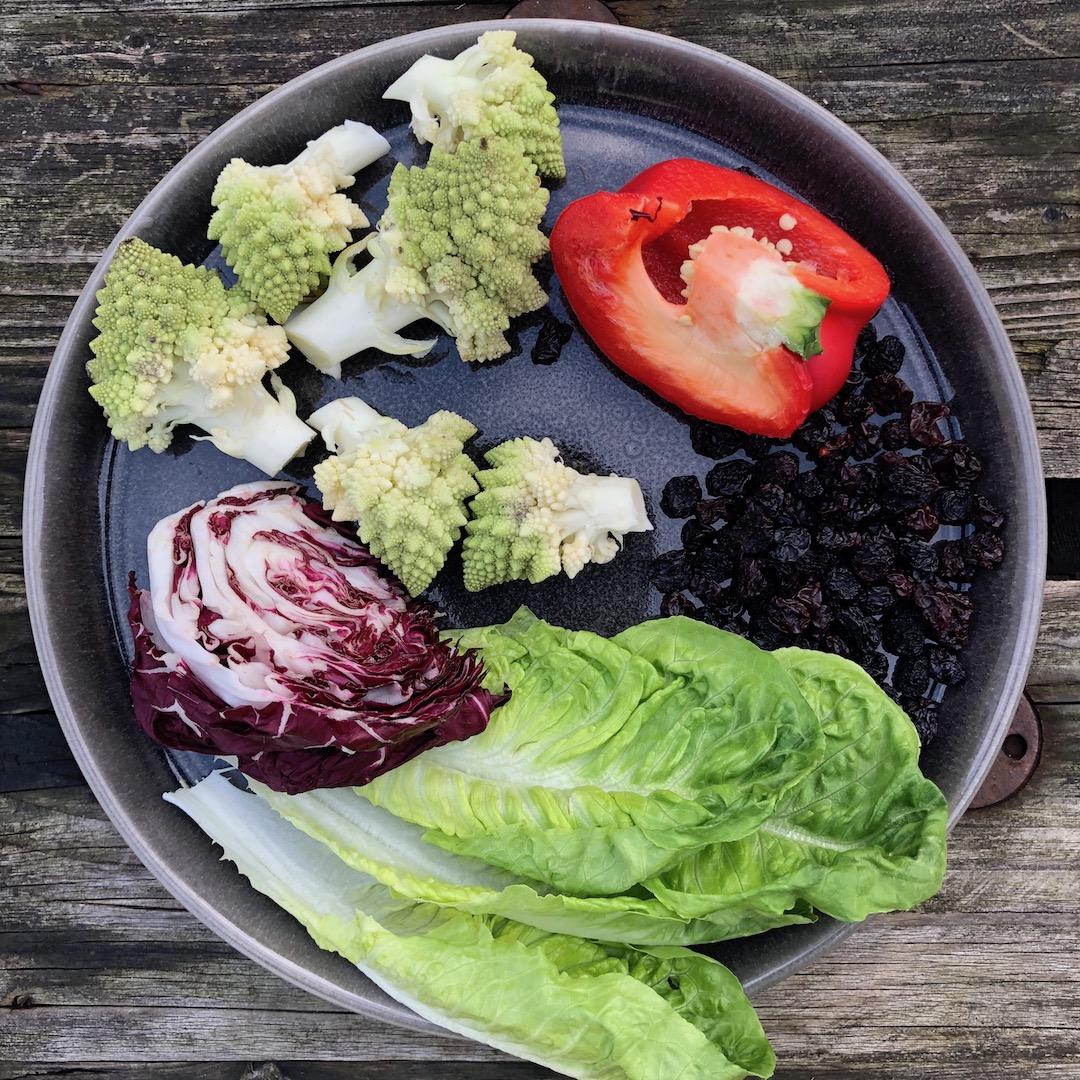Passas - Brócolis - Pimenta vermelha - Radicchio - Folhas de salada