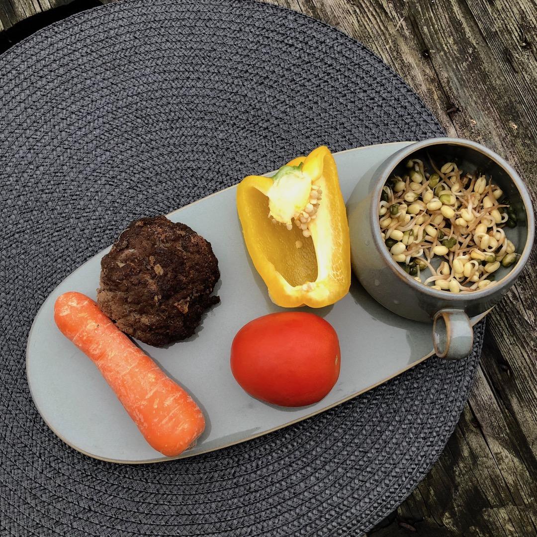Brotos de Feijão - Bife - Cenoura - Tomate - Pimentão Amarelo