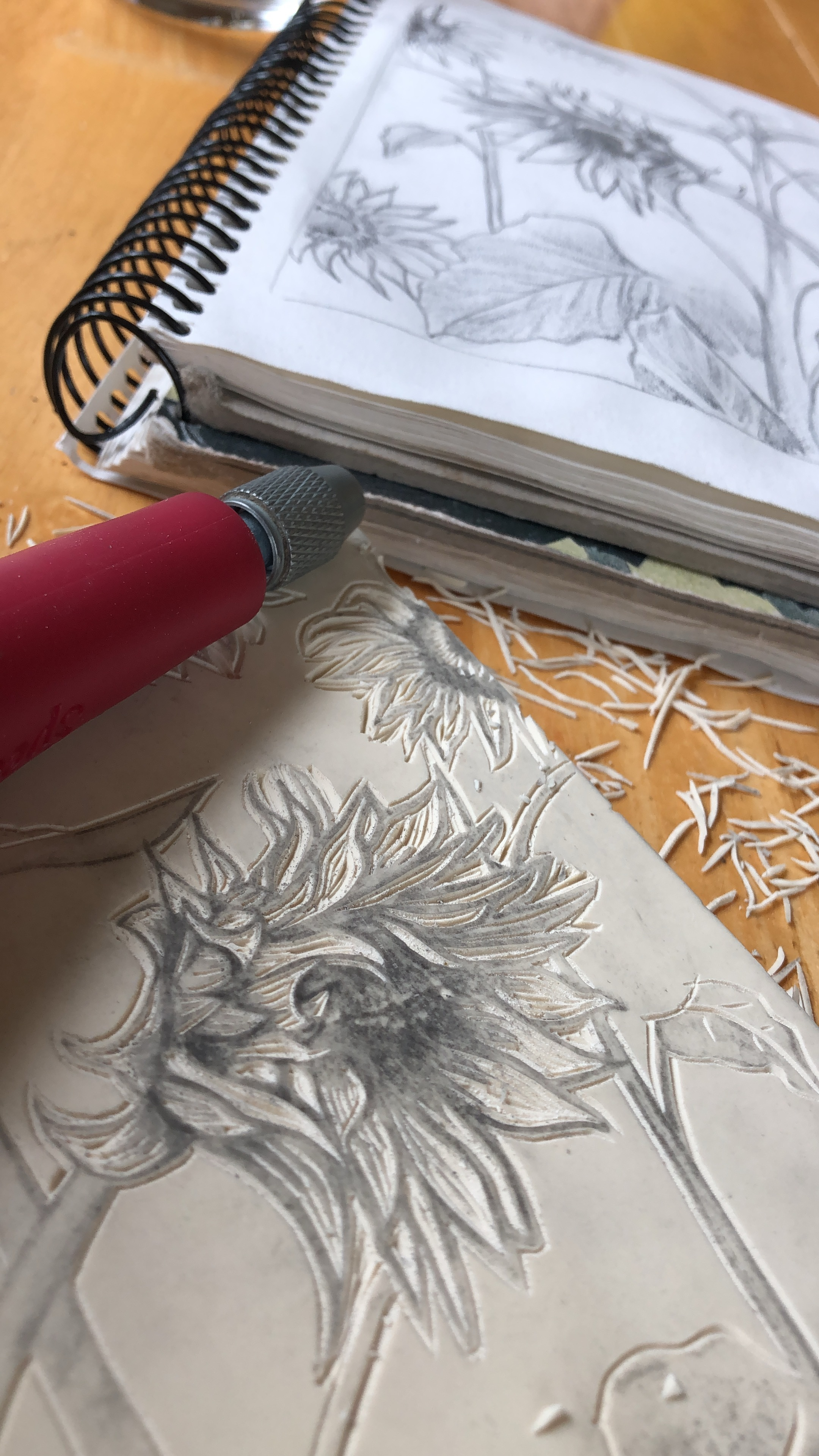 Sunflower sketch and intitial carving lines.