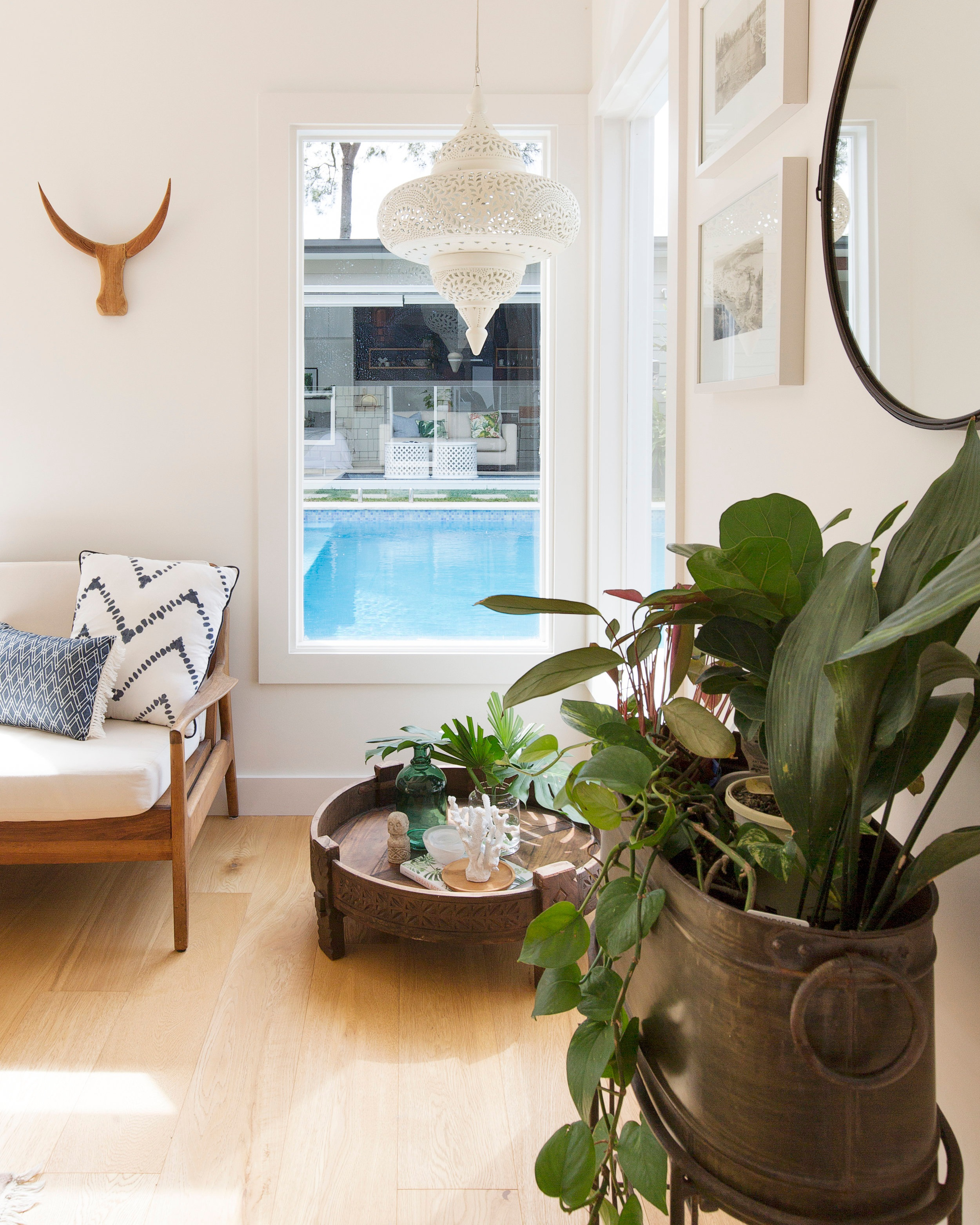 Indoor greenery warms and enlivens the interiors at the  Gloucester Street Project