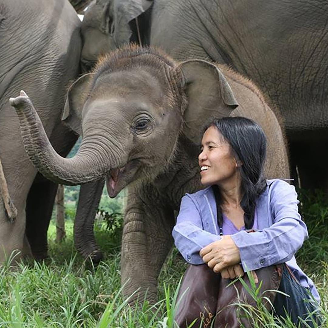 saveelephant.org