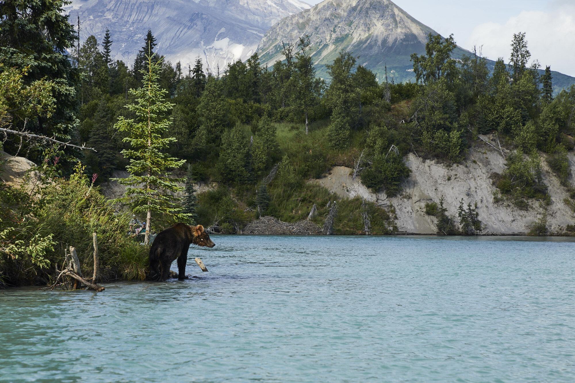 Alaska_Aug_2019_1206.jpg