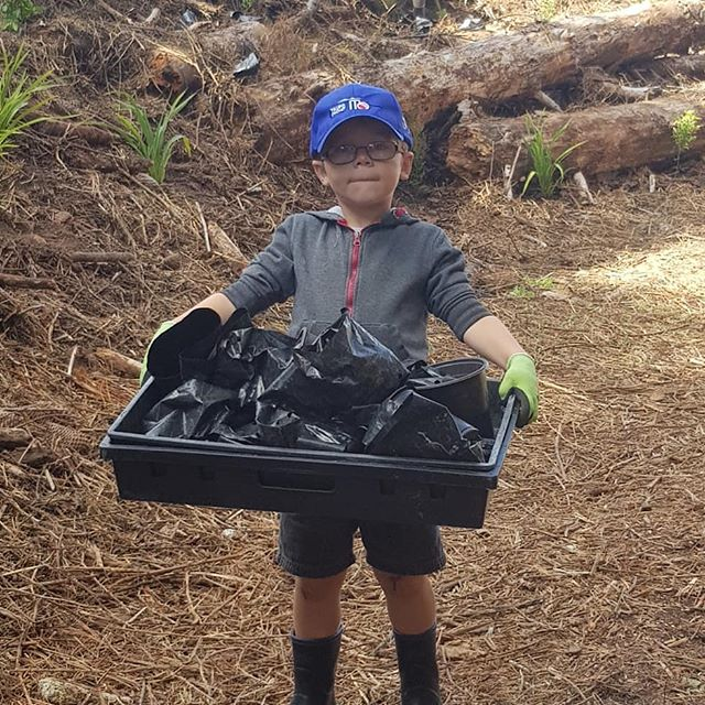 Great turnout transforming this gully today  with heaps of great helpers. #greeningtaupo #kidsgreening #greeningkids #lovetaupo