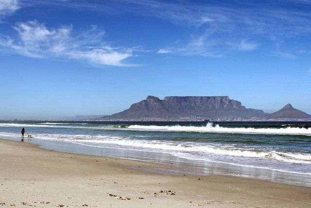 Our man from Bloubergstrand puts his cards on the table