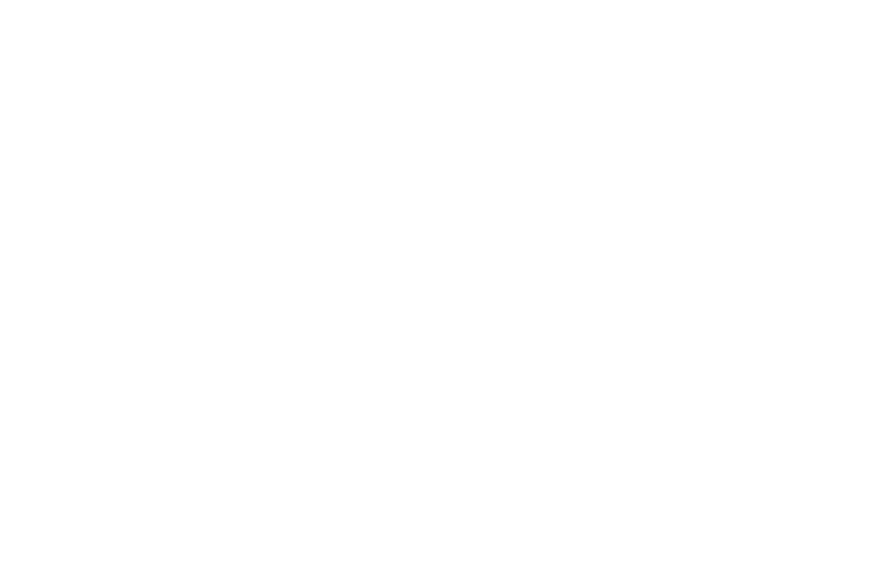 OFFICIAL SELECTION - FantasySci-Fi Film  Screenplay Festival - 2018 (1).png