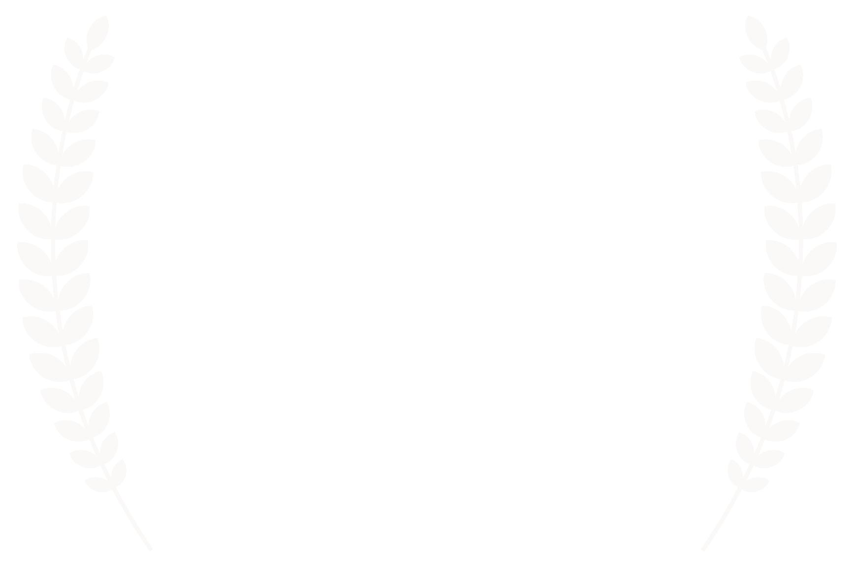 WINNER - Colorado International SciFi  Fantasy Film Festival - 2018 copy.png