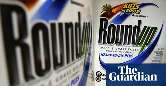 """[Image Description: A photo of two white bottles with the blue and green text reading, """"Round Up"""". In the corner of the photo is white text on a blue background reading, """"The Guardian"""".]"""