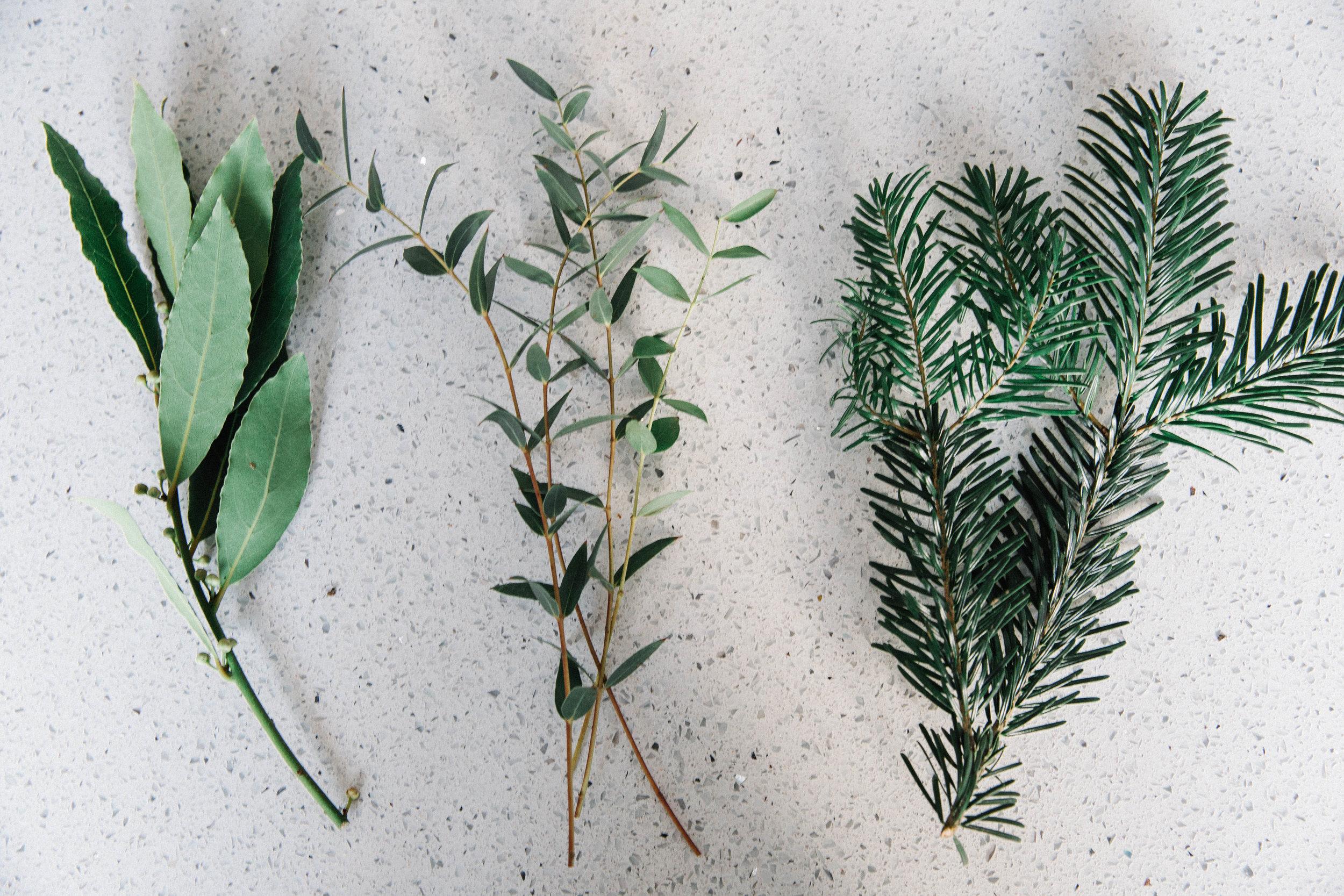 DIY-evergreen-wreath