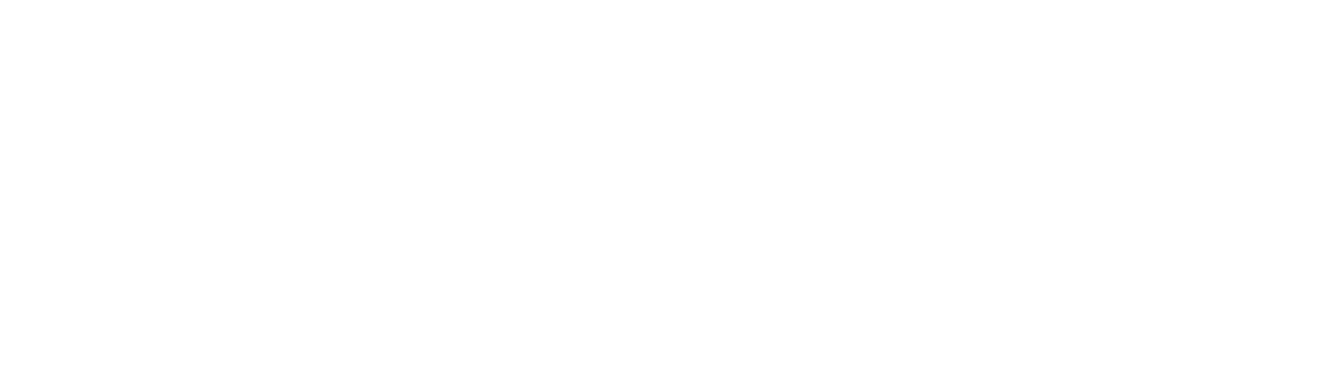 ELMEDIA-logo-wit.png