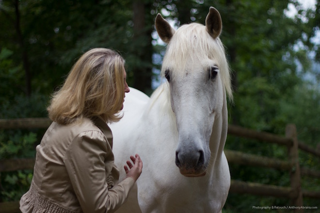 equine experiential learning - barbara alexander