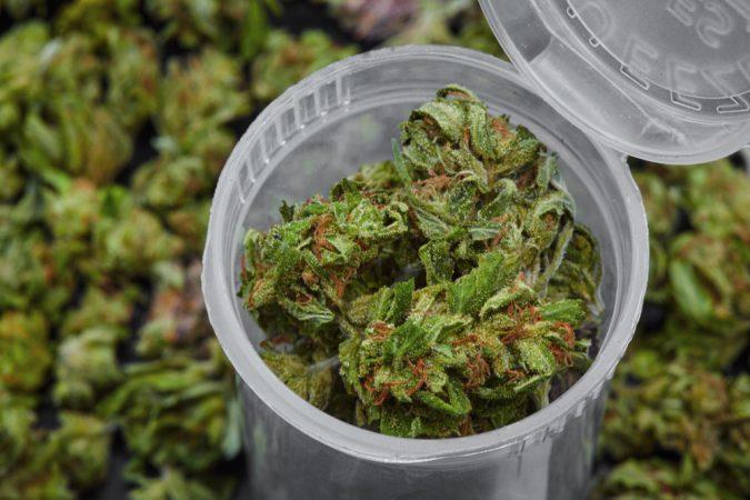 DVJ Fine Cannabis