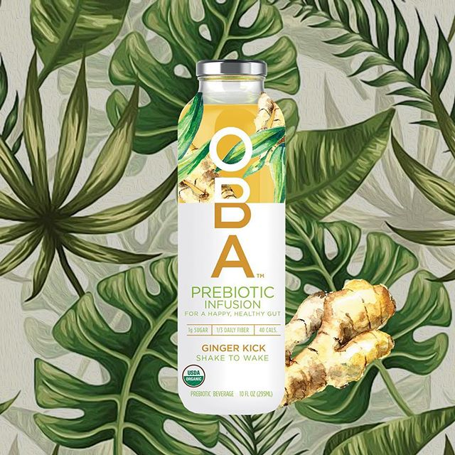 Who said you had to choose between heath and taste? Our ginger flavor is a nutritious and delightful #superfood blend packed with #prebiotic dietary fiber and essential nutrients made to support your healthy gut.⁣ ⁣ Our prebiotic fiber comes from three super sources: baobab, acacia gum and blue agave, which are all #organic and sourced sustainably.