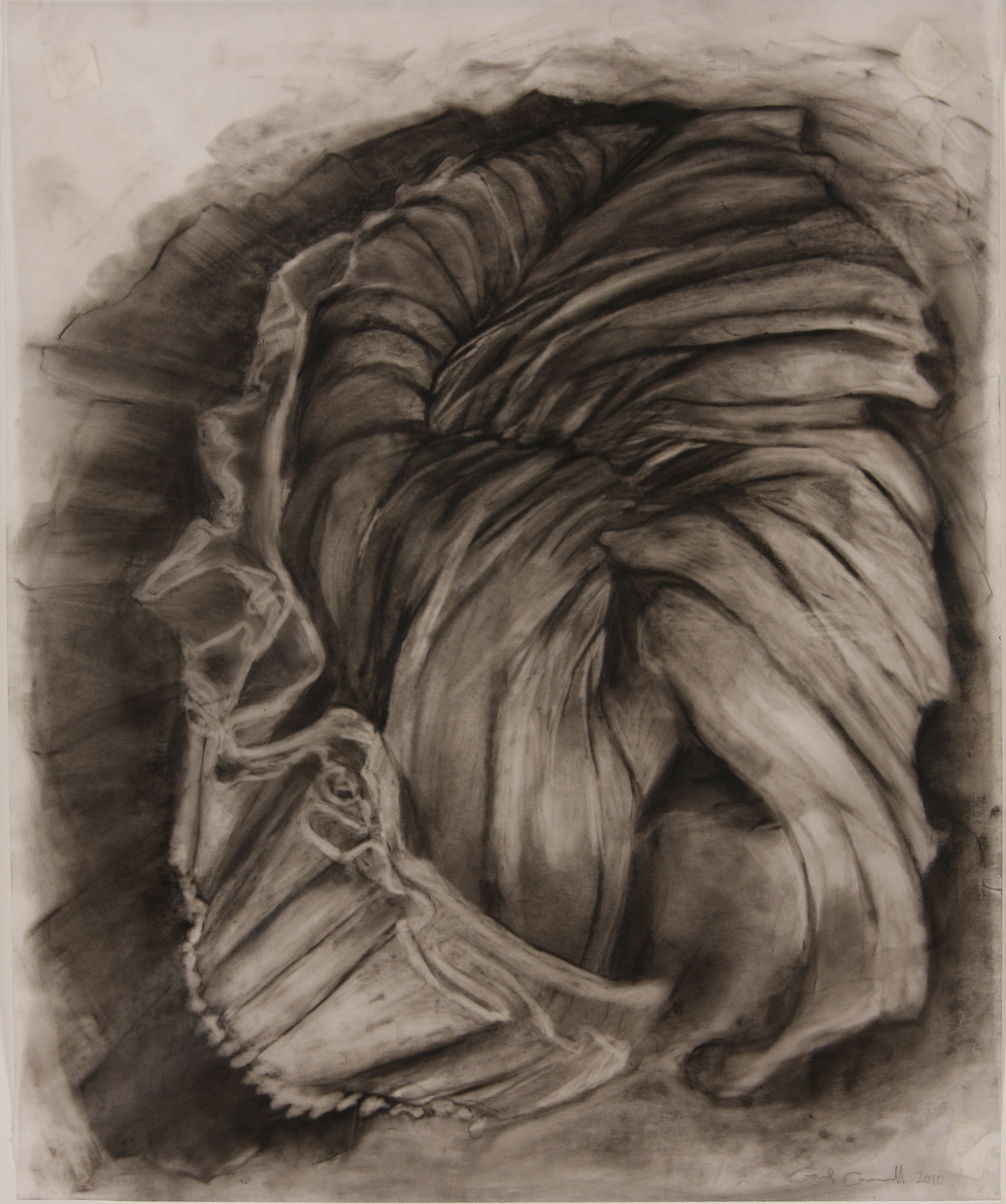 "Enfold 17""x 14"" charcoal on vellum"