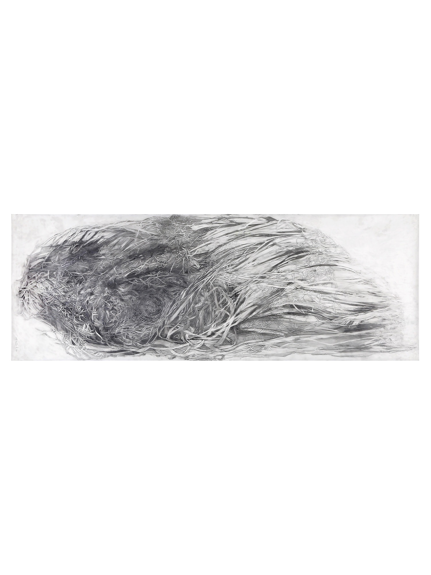 "Flow | 2014 30"" x 84"" graphite on film"