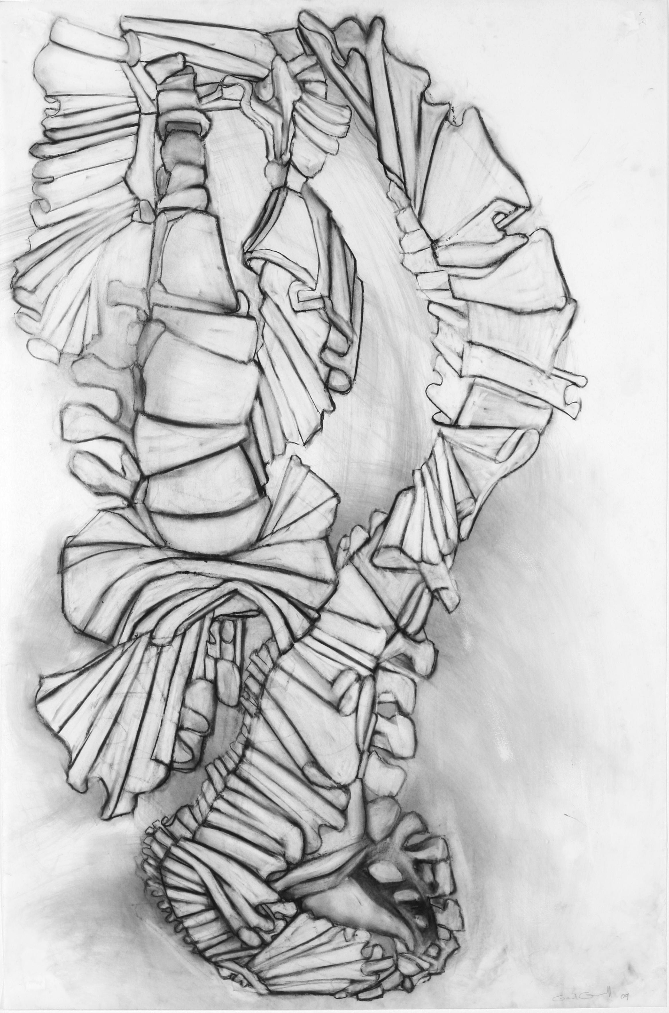 "Ruffle Study 4 33"" x 24"" charcoal on vellum"