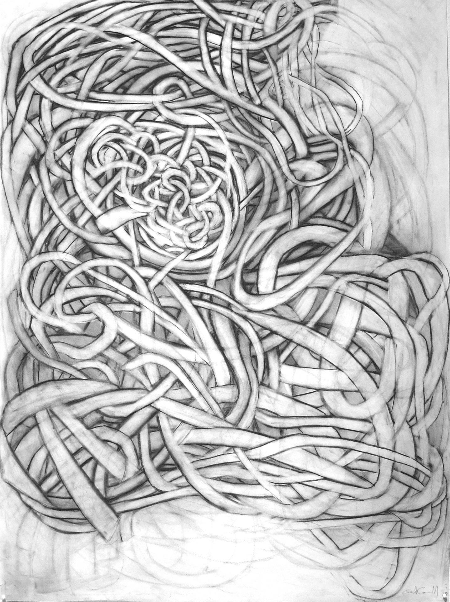 "Ruffle Study 3 36"" x 25"" charcoal on vellum"