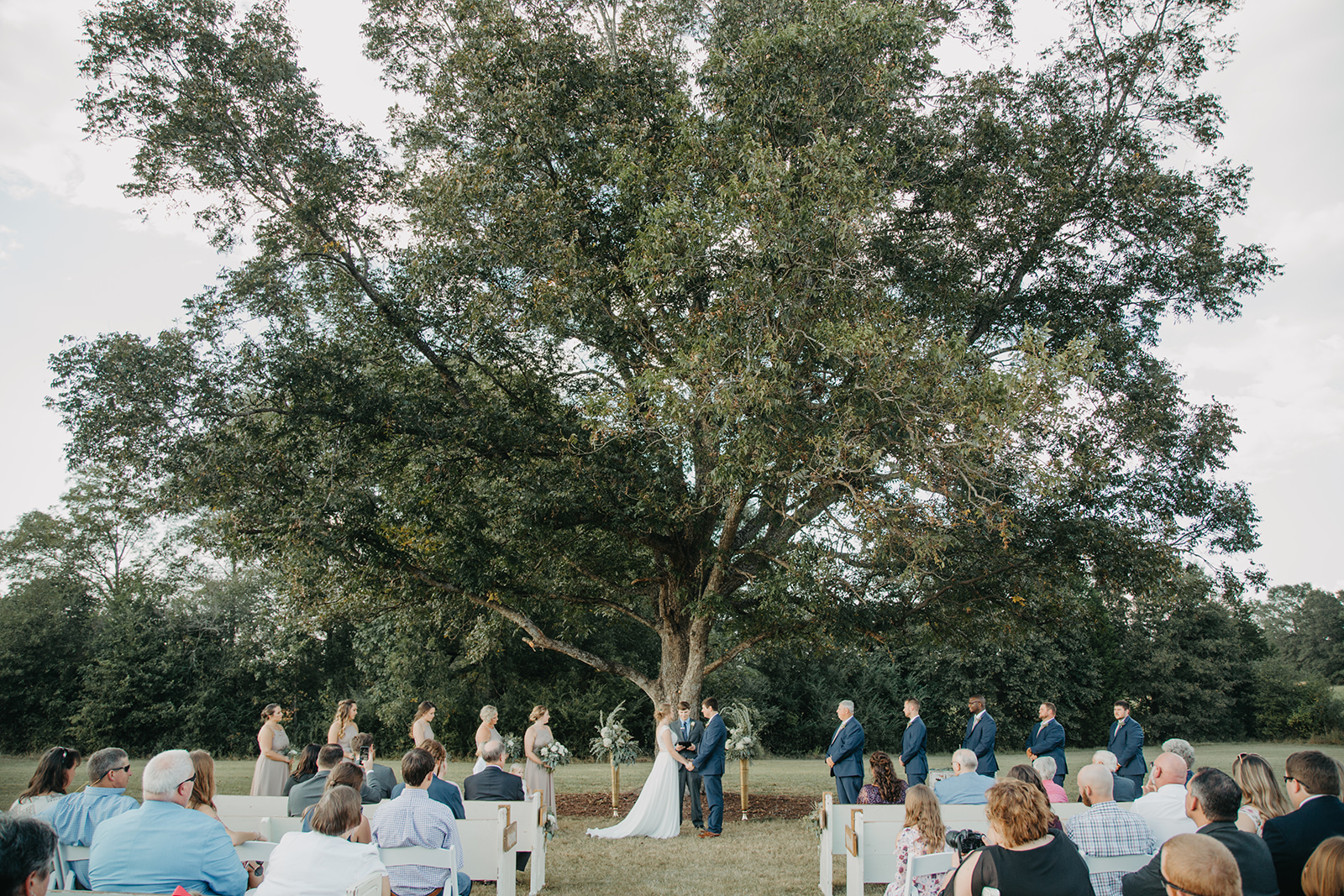 Outdoor wedding ceremony under our pecan tree. pc Taylor Ann Photography