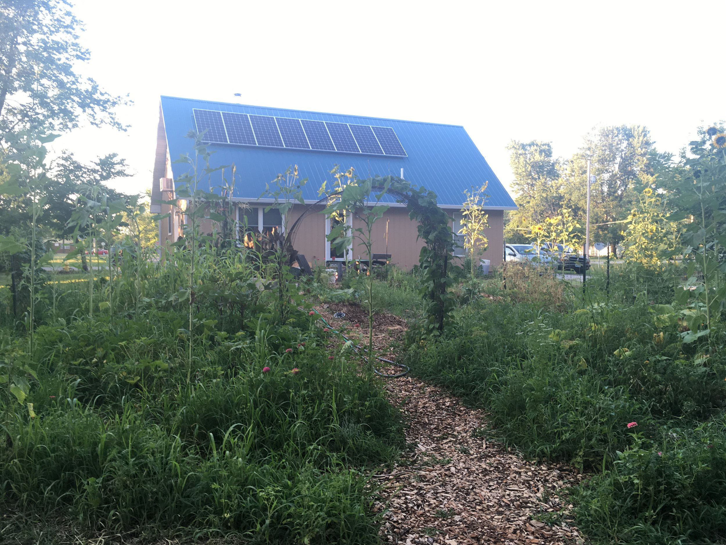 Jessica and her husband are using permaculture methods to grow fruits and vegetables within city limits in Kirksville, Missouri.