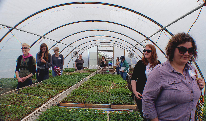 green house band photo.jpg