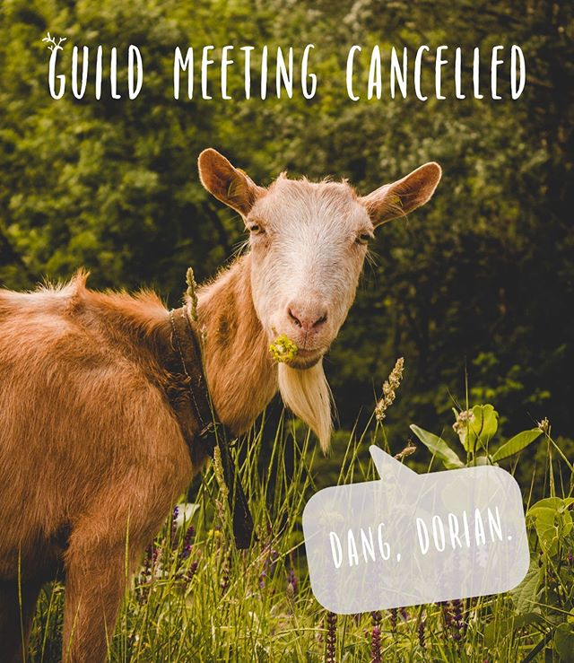 Due to Hurricane Dorian we are cancelling this week's Guild Meeting. Everyone travel safe, good luck and don't forget to take a fiber project along! . . #dangdorian #hurricaneseason