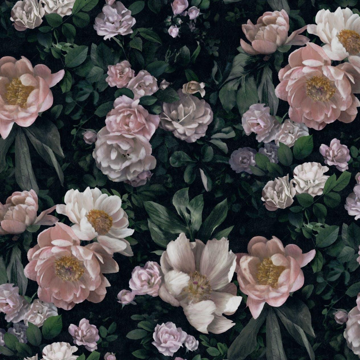tapet-borastapeter-inbloom-new-dawn-rose-7234__49bb983d-7844-4a96-a8dd-d265251a3748.jpg