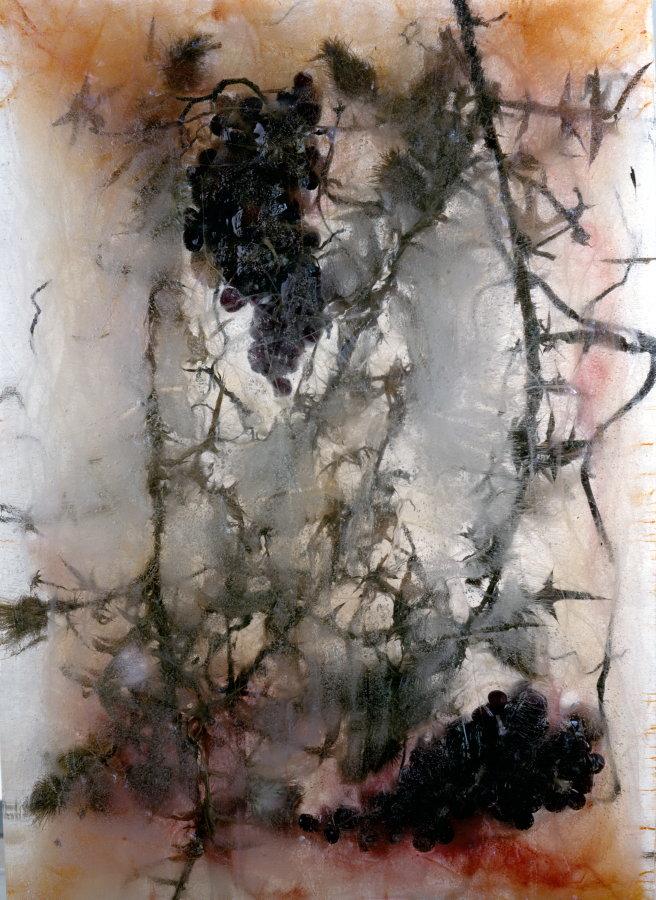 0885 Thorns-Grapes.jpg