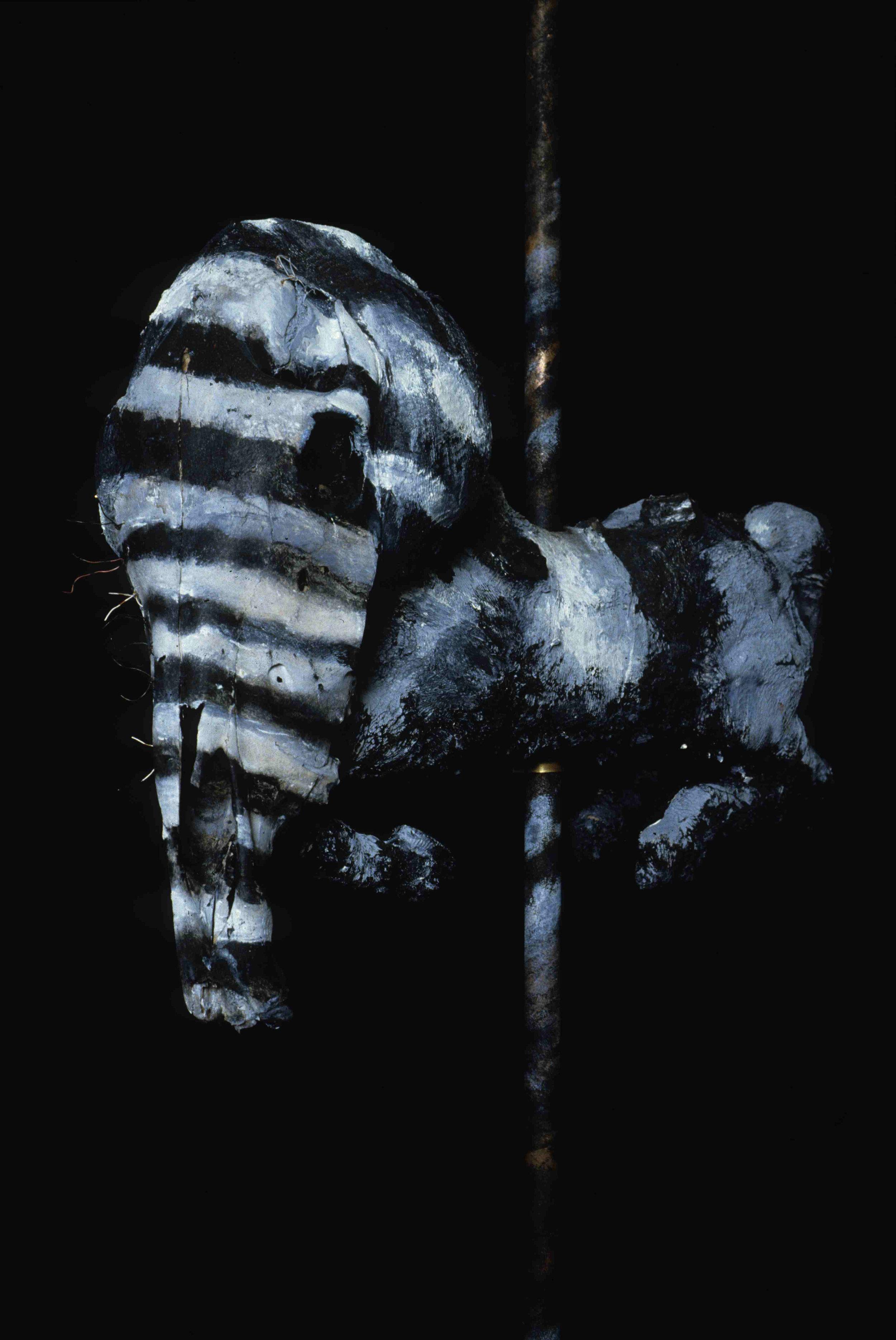 Carousel Stripeskull