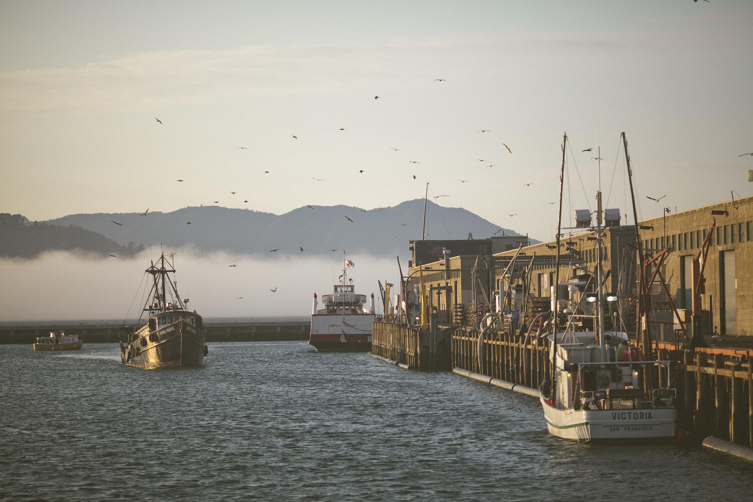 Fishermans Wharf 5 (1).jpg