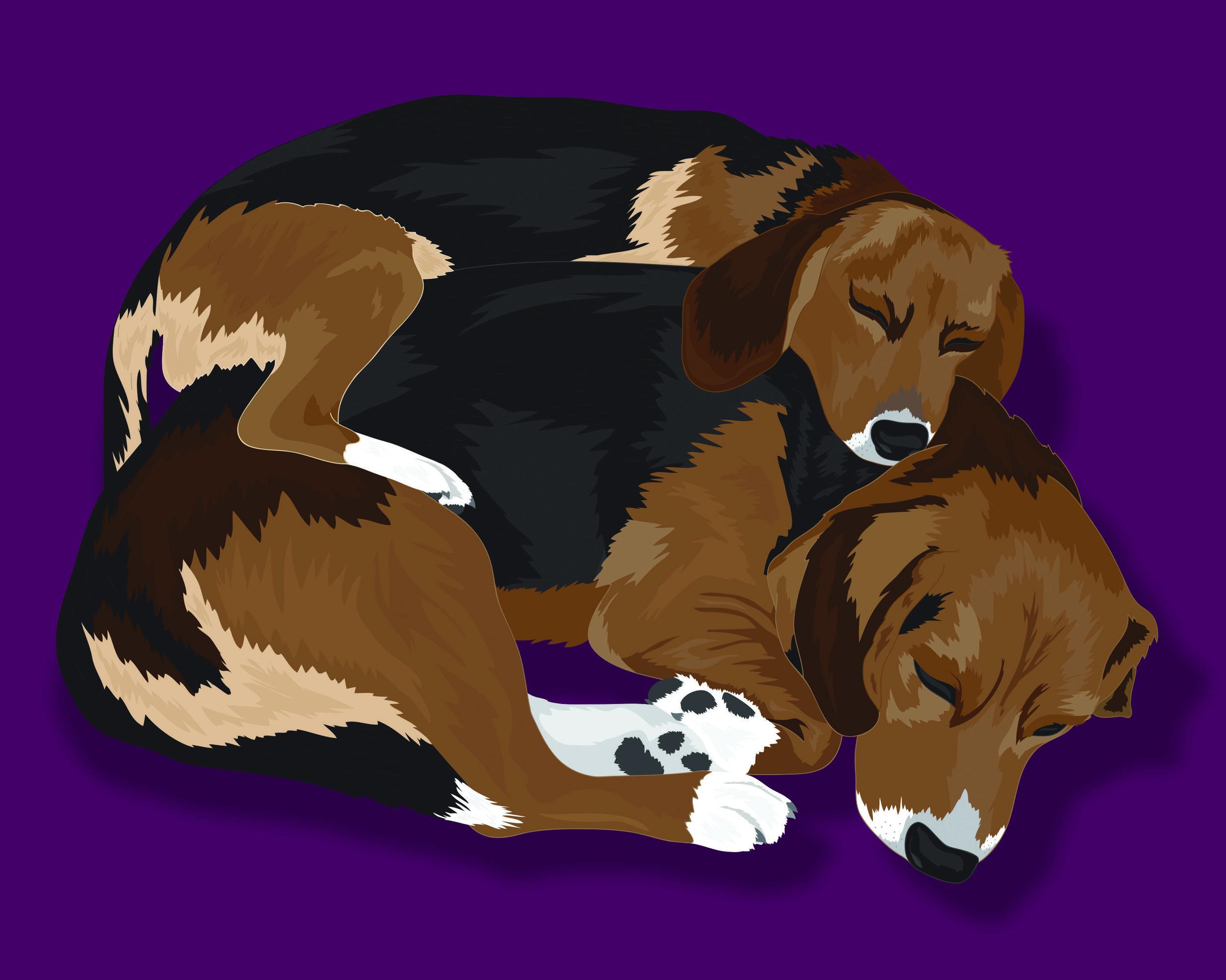 PROOF ONLY_CTD_Pups_Pam Ericksob_Double Pet Portrait_RealisticStyle.jpg