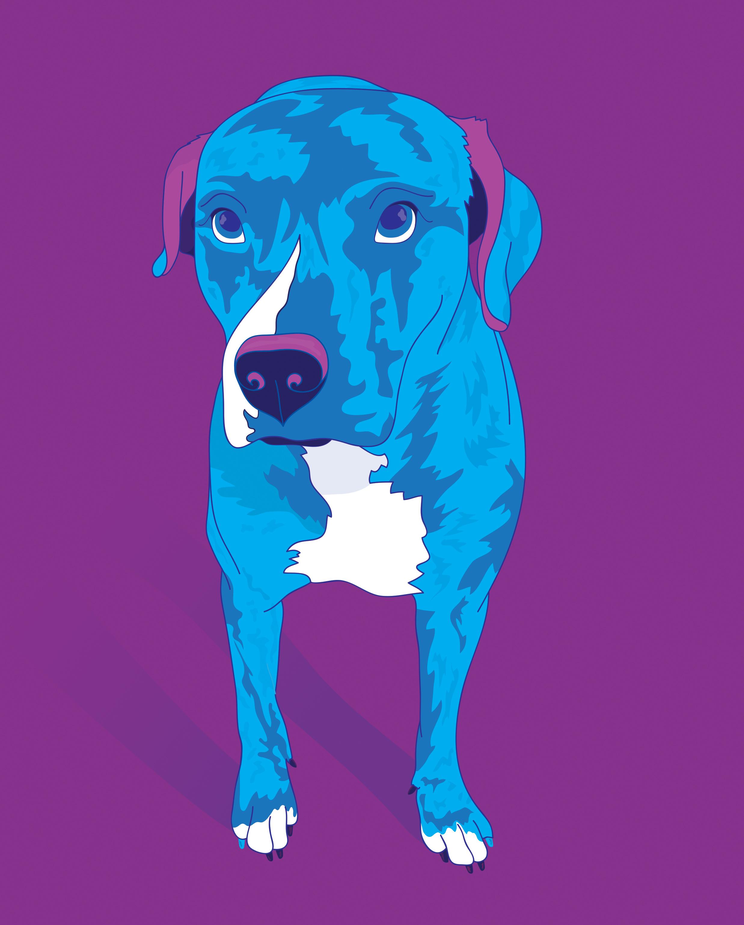 V2_CTD_Bo_Single Pet Portrait_PopArtStyle.jpg