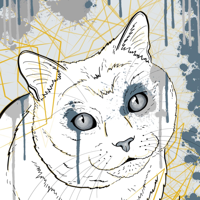 Splash+Cat.jpg