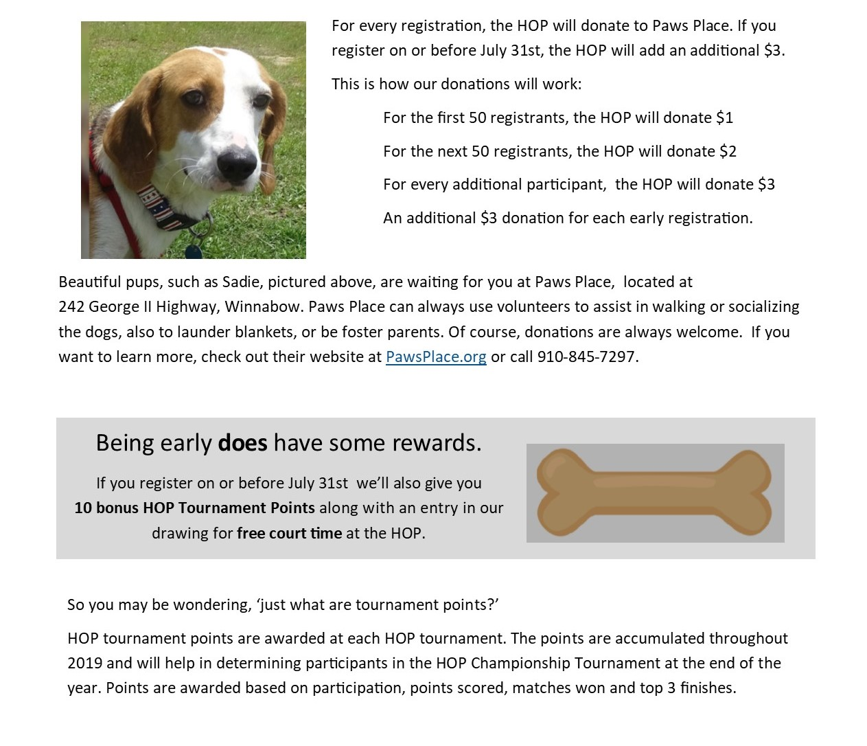 dog days more infosecondhalf2.jpg
