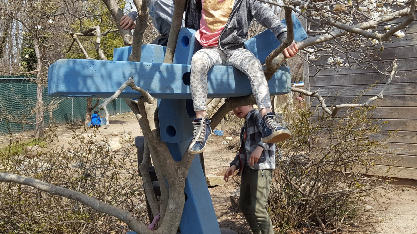 Children sit and climb around on blue foam Imagination Playground blocks that have been set into the branches of a tree.
