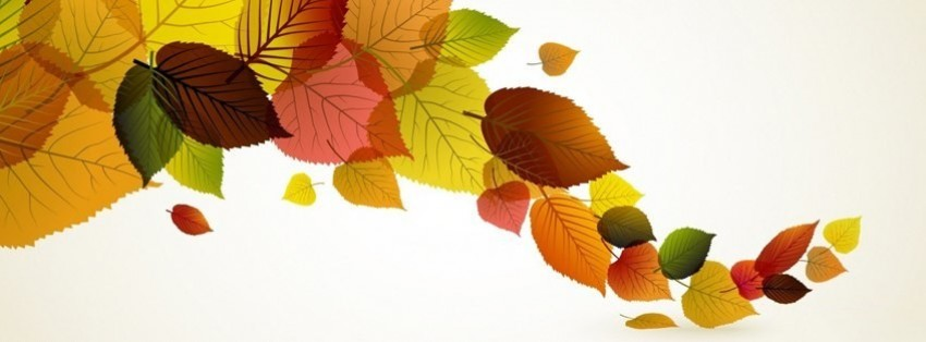 autumn-leaves-background-15-facebook-cover-timeline-banner-for-fb.jpg