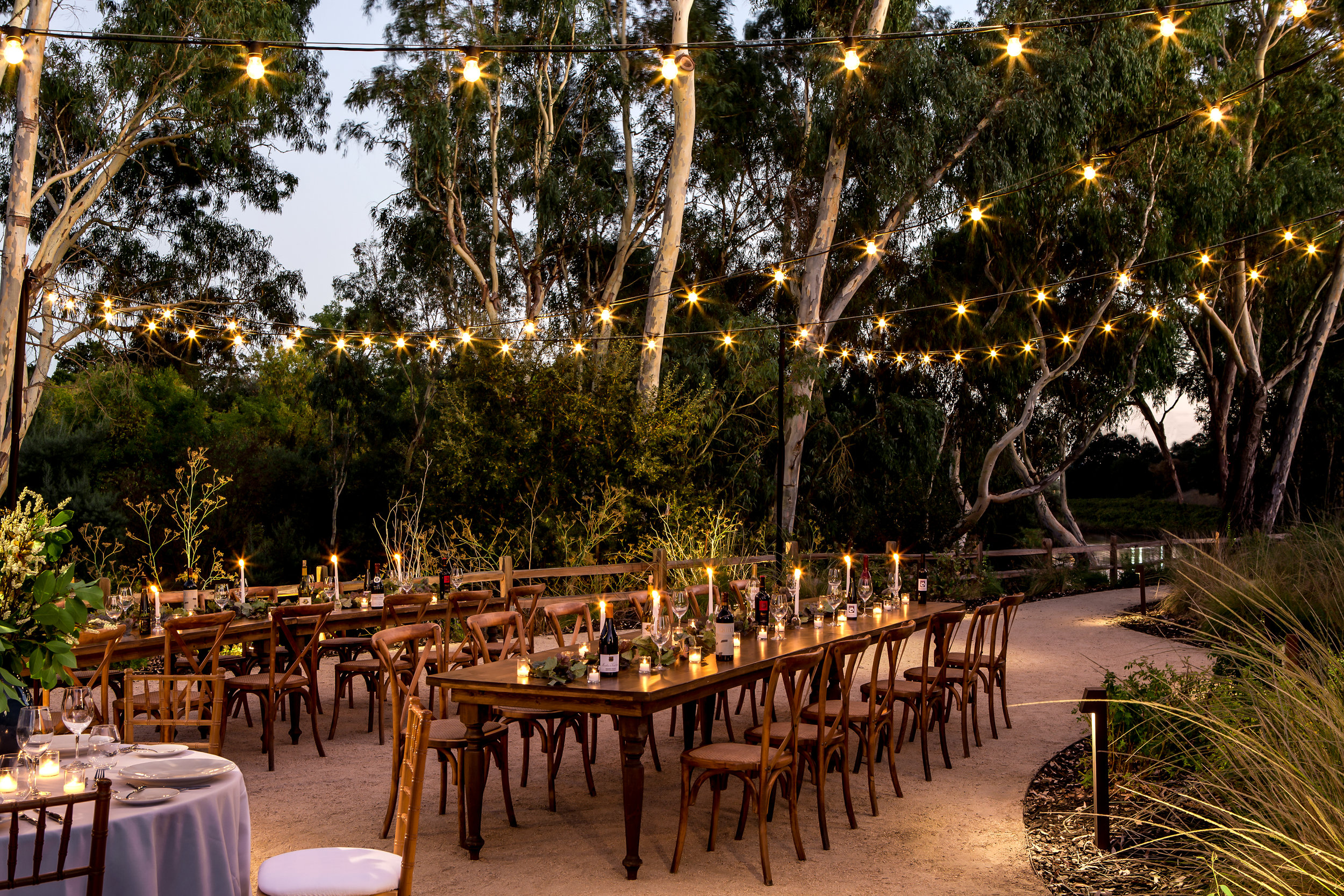 String Lighting at Napa River Terrace Inn (Hi-Res).jpg