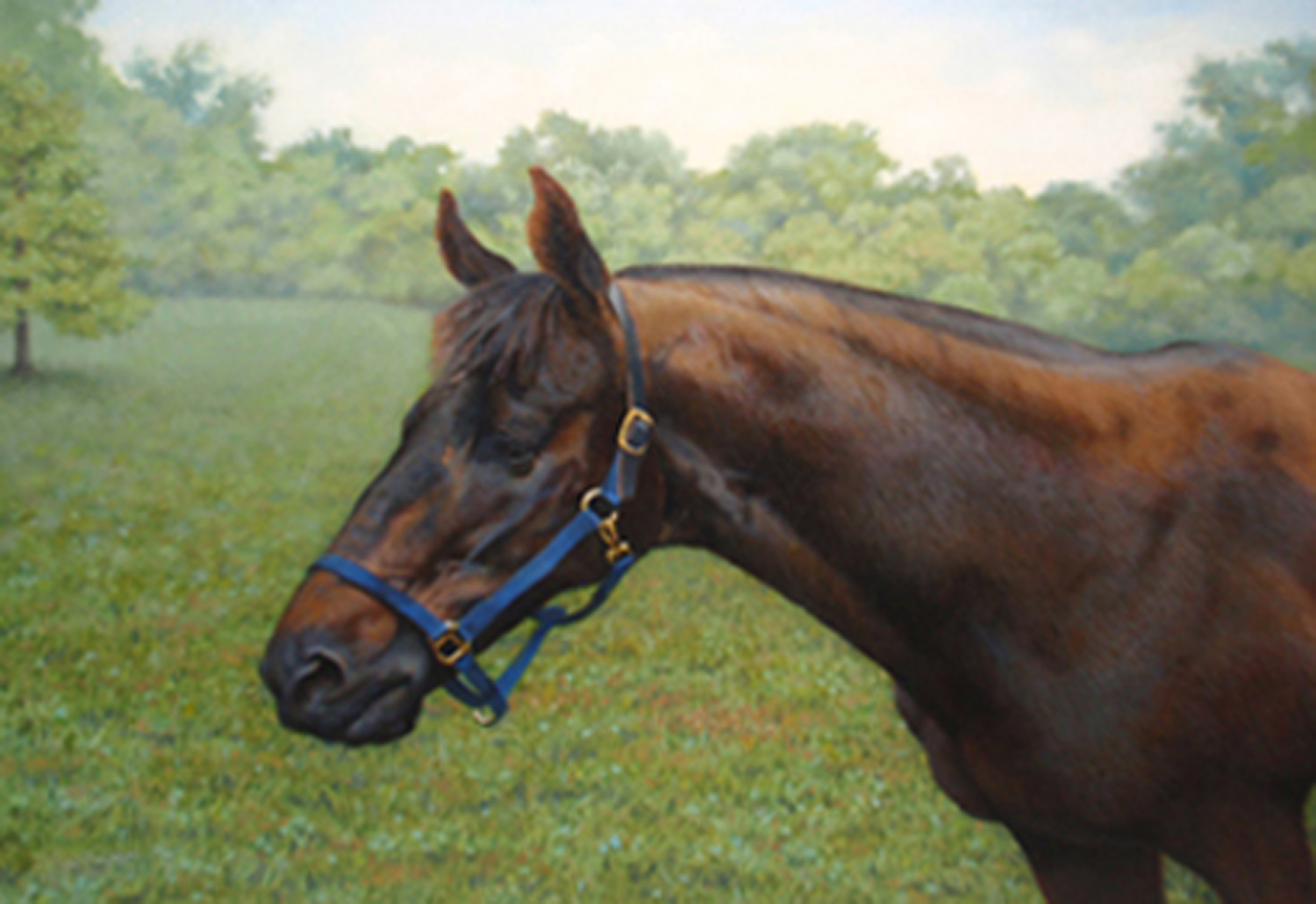 """""""Sam -- The Old Gentleman""""  Oil 12""""x 16"""" Reproduction also available."""