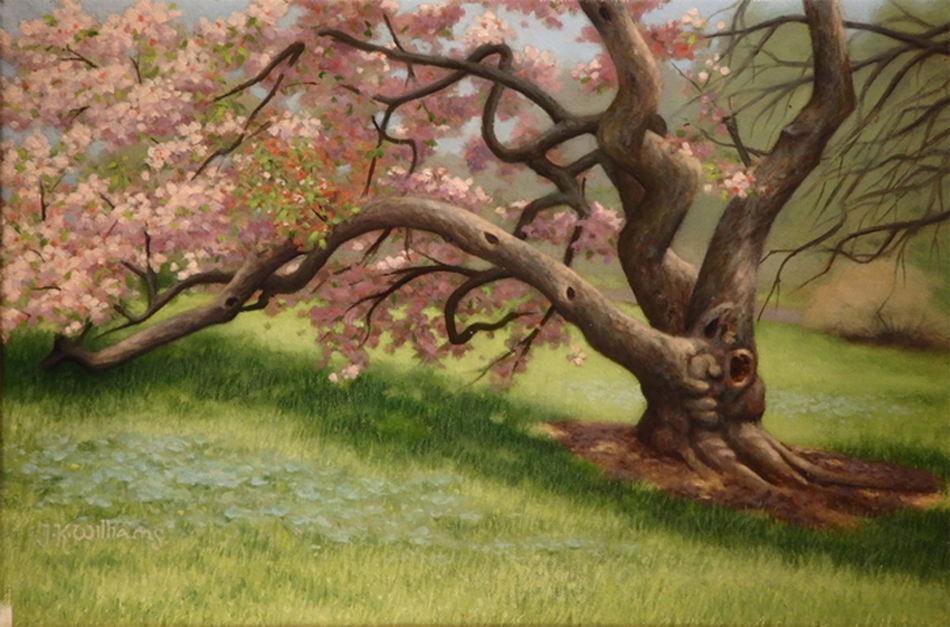 """Blooming Crabapple""    Oil 9 1/4"" x 13 1/2"""