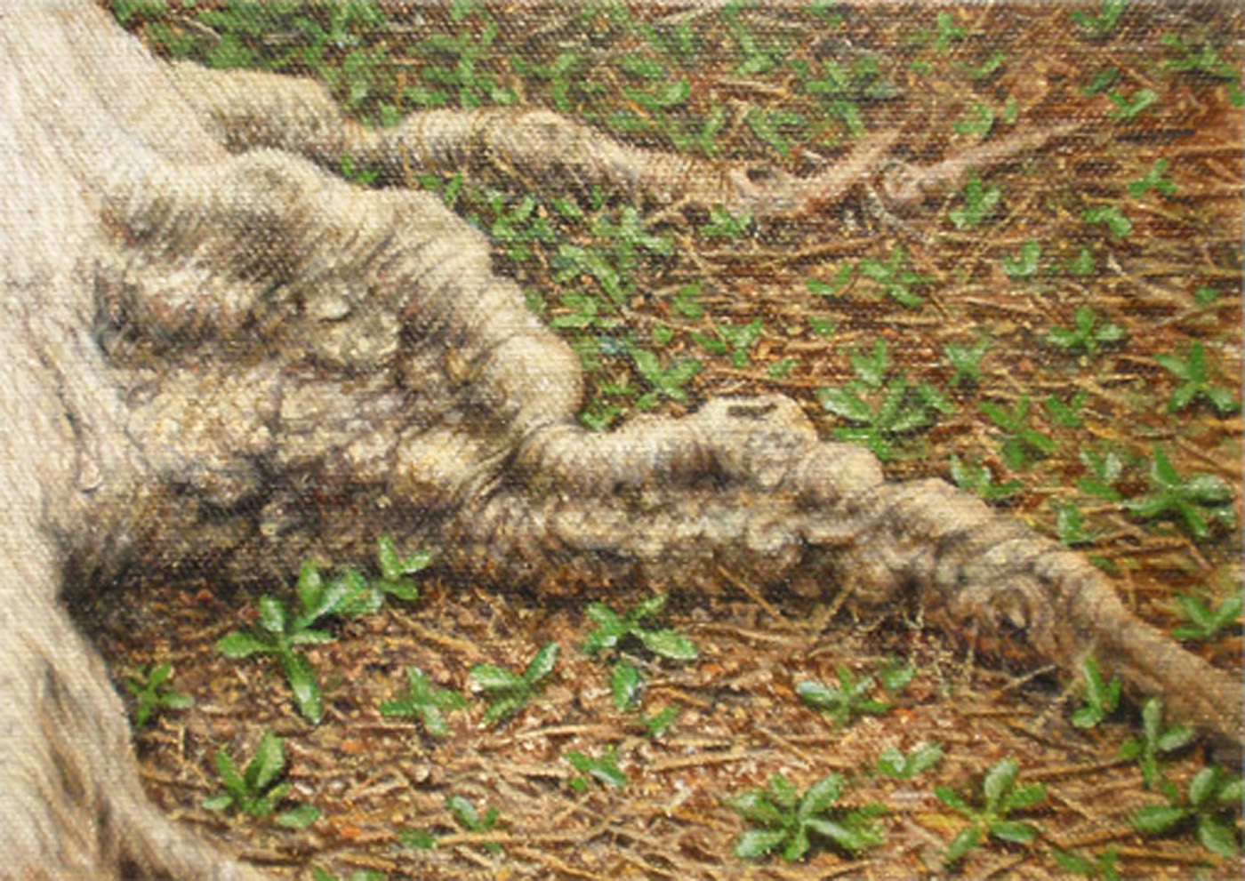 """""""Locust Roots by Lamplight""""    Oil 5""""x 7"""""""