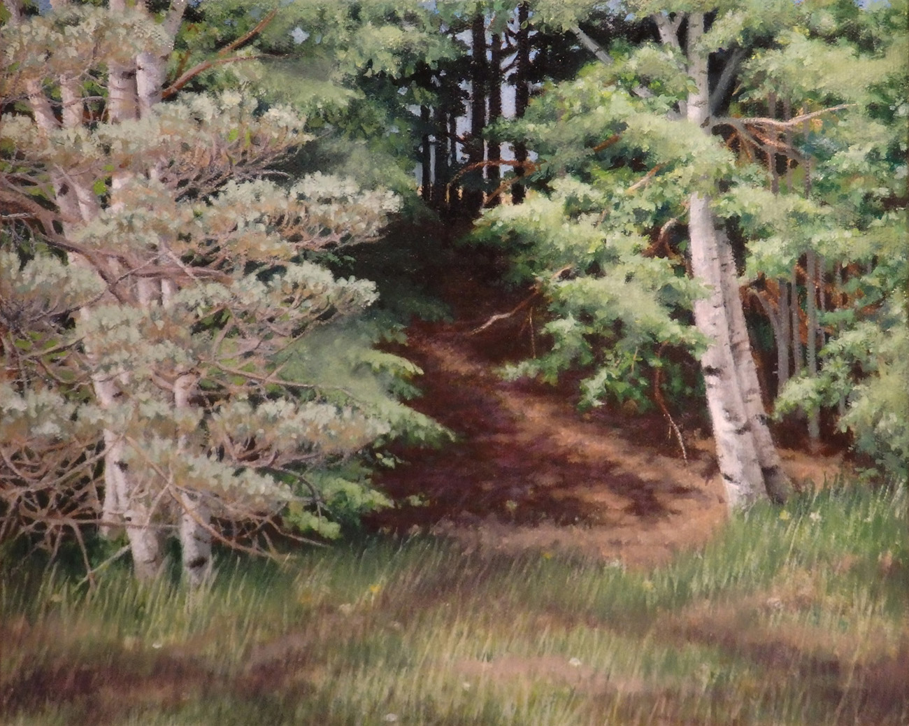 """   Woodland's Edge""    Oil 8""x 10"""