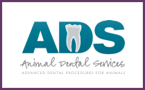 avsg_dental.png