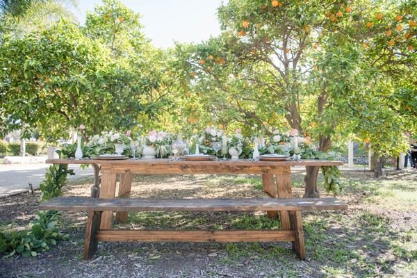 California_orange_grove_summer_wedding_Charleston.jpg