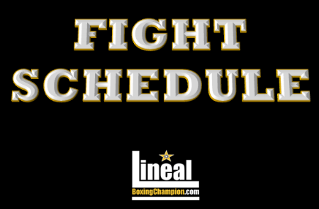 Fight schedule black square October 2.png