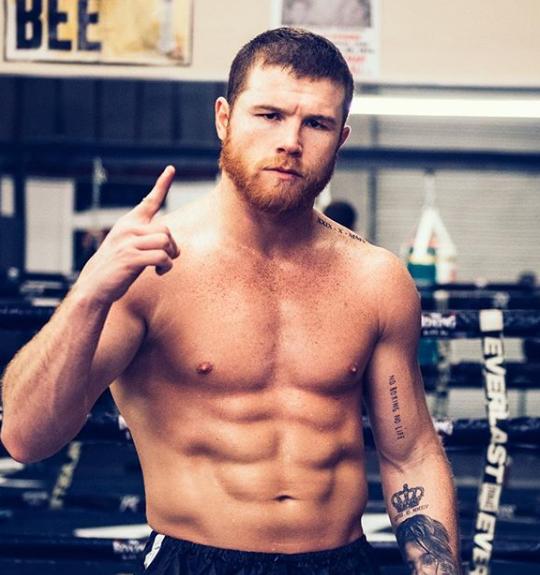 Middleweight World Champion: Canelo Alvarez