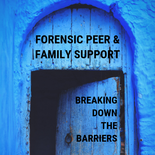 Forensics Support.png