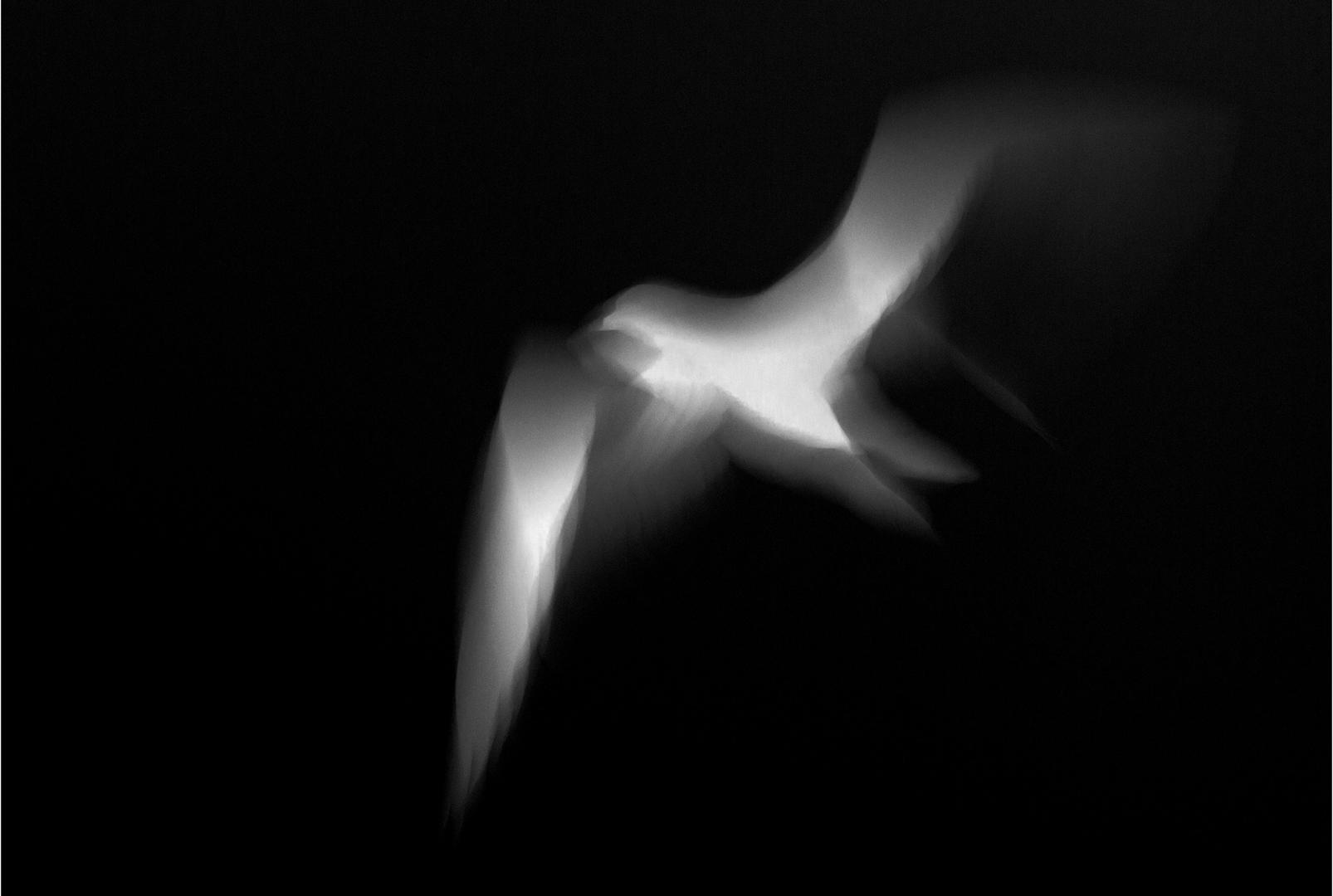 Flight II